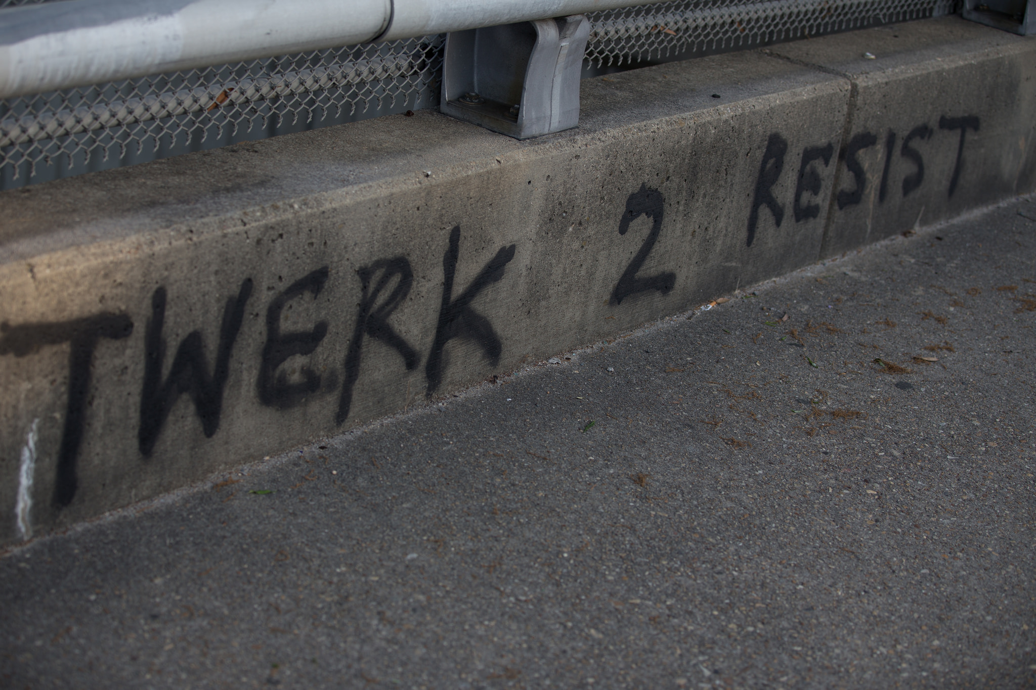 twerk-to-resist